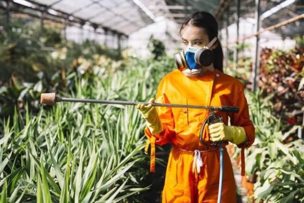 عوارض استفاده از حشره کش ها و آفت کش های شیمیایی